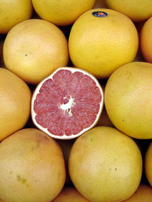 450pxpomelos__grapefruits